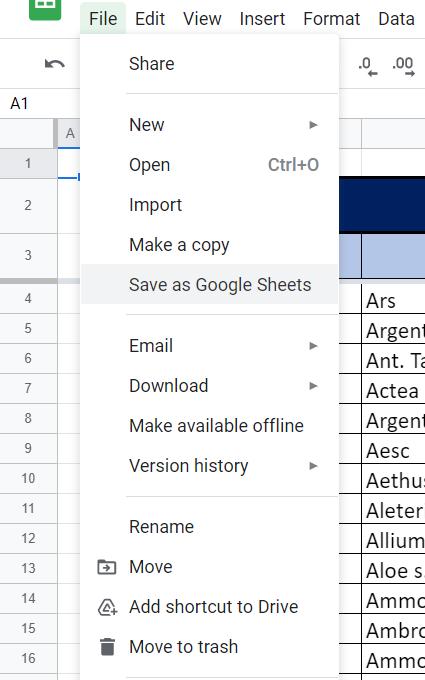 Save as Google Sheets