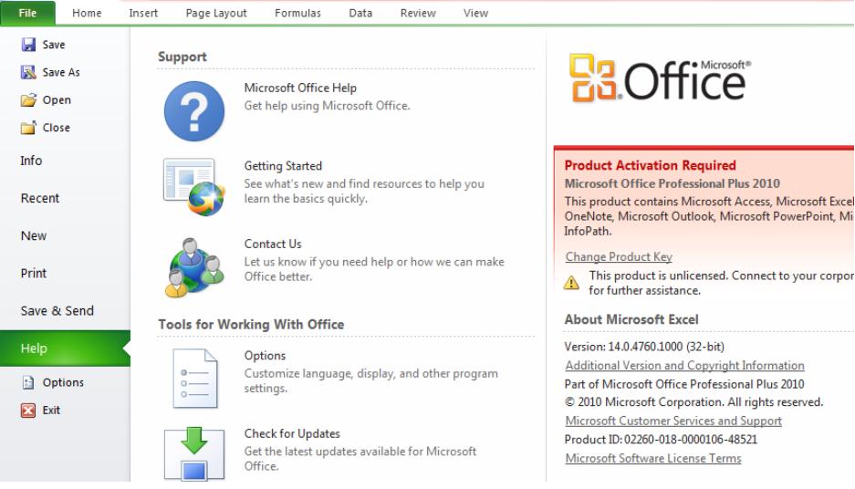 Excel 2010 Current Version